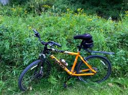 Cycling thru COVID-19-112