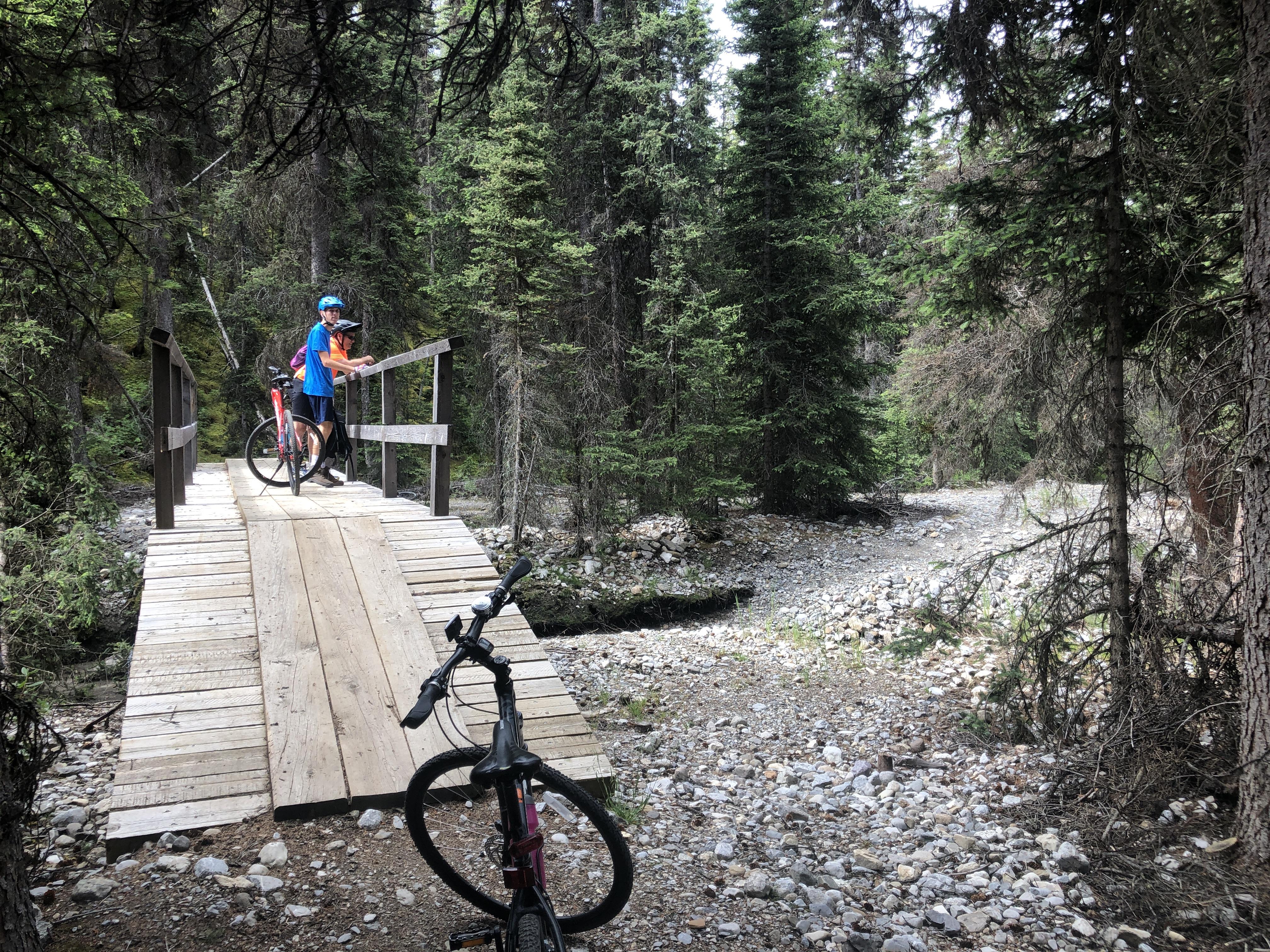Cycling thru COVID-19-66