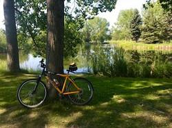 Cycling thru COVID-19-55