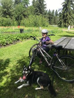 Cycling thru COVID-19-1 JULY
