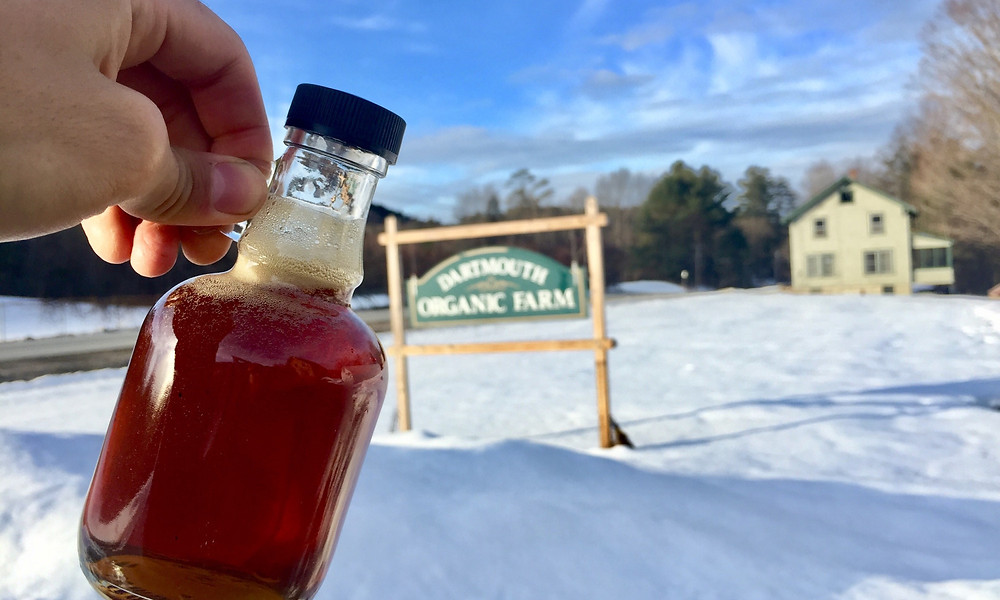 Maple Syrup from the Dartmouth Organic Farm! Photo by: Johnny Sanchez '18