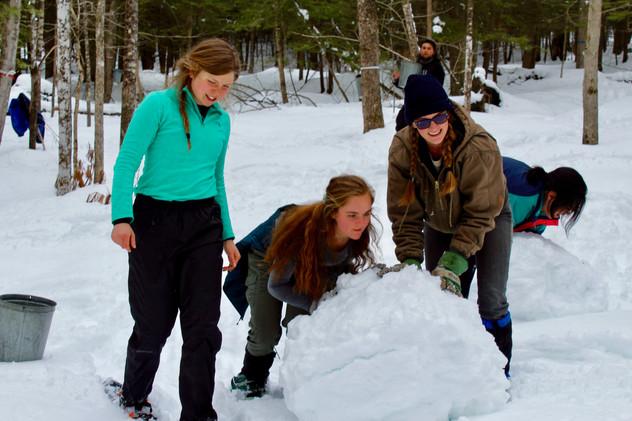 The team builds a snow bear!