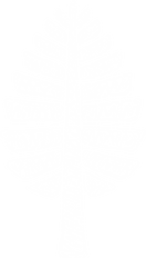Sketchy Pine website.png
