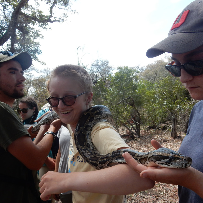 Kyle, Lydia and Amber holding the python during a snake demonstration and awareness session in Timbavati, South Africa. Image by Akhila Kovvuri '18