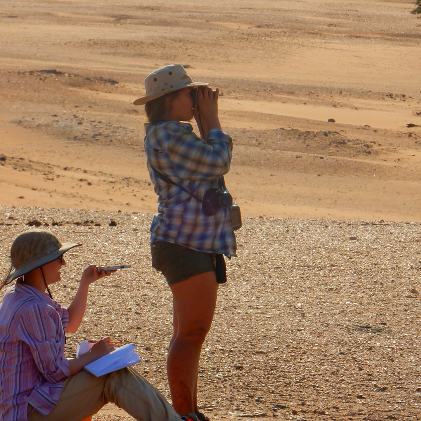 Lydia and Ruby observing donkeys in the Namib desseert as part of our group project in the Gobabeb Research Center. We were studying livestock movement and behaviour in response to heat stress. Image by Akhila Kovvuri '18