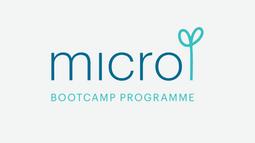 Micro Bootcamp