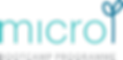 Micro Bootcamp Logo.png