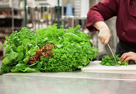 Organic restaurants, chefs, Organic greens, Organic Lettuce, Organic herbs, Organic micros, South Western Ontario, Organic Ontario, living, raw food, healthy, chefs mix, micro mix