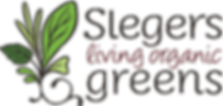 Slegers Living Organic Greens, Organic, Living, Organic Greens, Greenhouse, South Western Ontario, lettuce Ontario, greens Ontario, herbs Ontario, micros Ontario