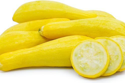 Organic Yellow Squash (Each)