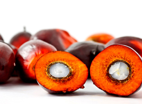 Is Palm Kernel Oil Really as Tropical as it Sounds?