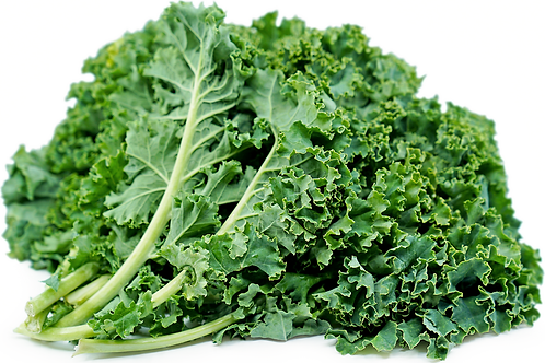 Organic Kale (10 oz. bag)