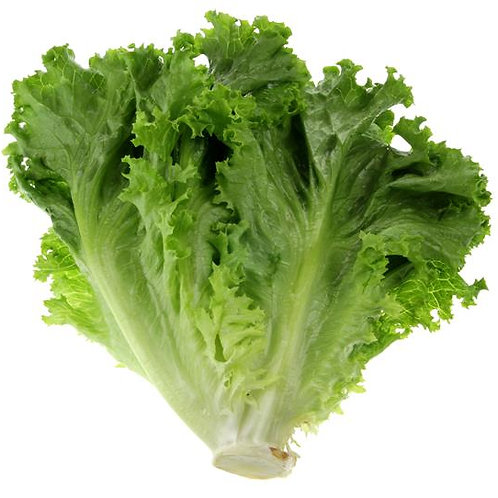 Organic Green Lettuce (By the head)