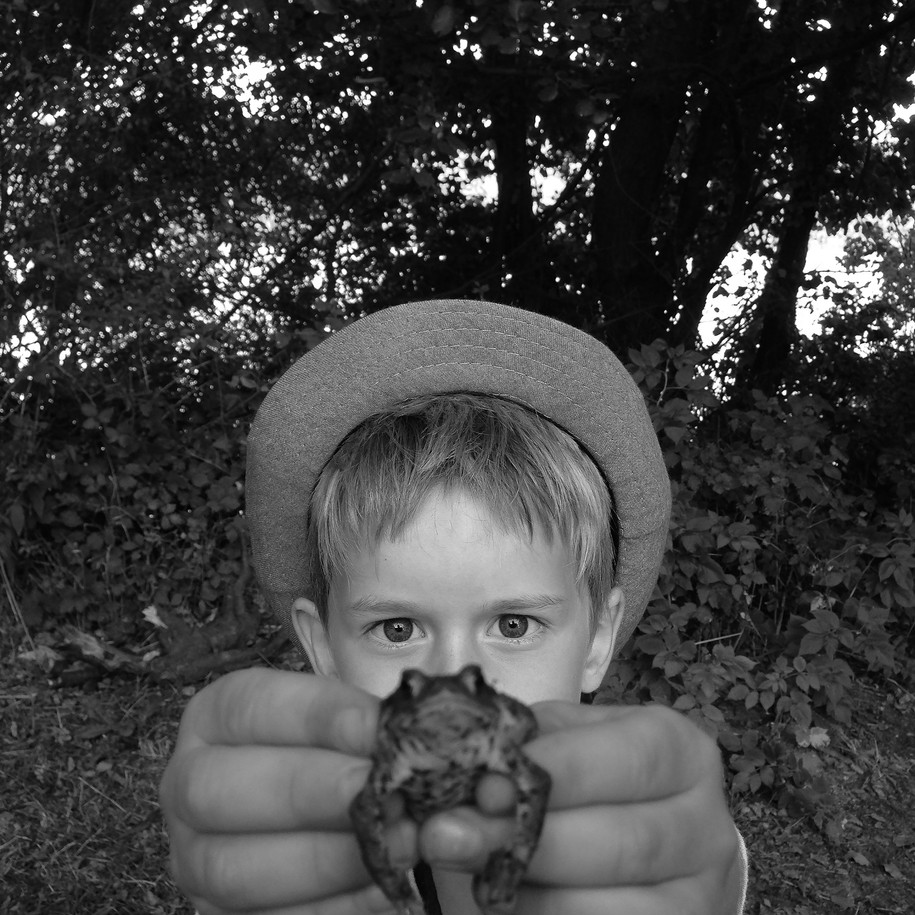 "Thomas Ruff, ""Little Toad"", 2016, c-print, e.a. © Thomas Ruff, 2016 / Courtesy Pelz Collection, Stuttgart, Germany"