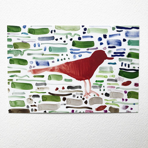 Bird on a Wire Postcards