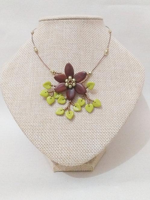 Cassia vert
