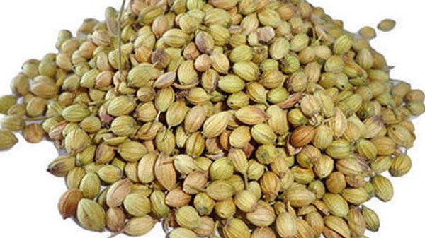 Coriander Seeds - Dhaniya beej - Kottambari Beeja