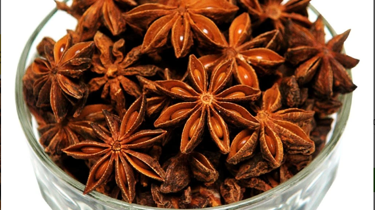 Star Aniseed - Pineapple Flower