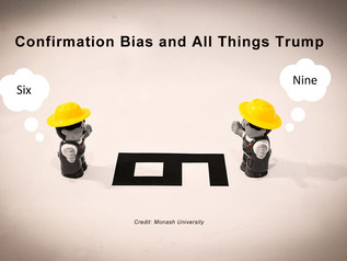 Confirmation Bias and All Things Trump