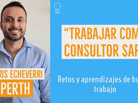 Consultor SAP | Buscar trabajo profesional