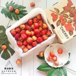 豐益鮮果 | 美國華盛頓白櫻桃