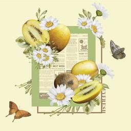 豐益鮮果 | 紐西蘭黃金奇異果