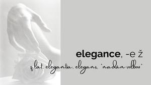 o pravidlech a duchu elegance II