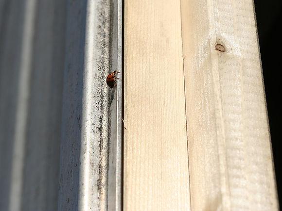 grimsby-joiner-door-frame-installation