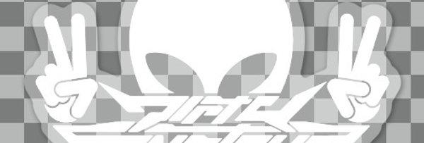 DS Sticker