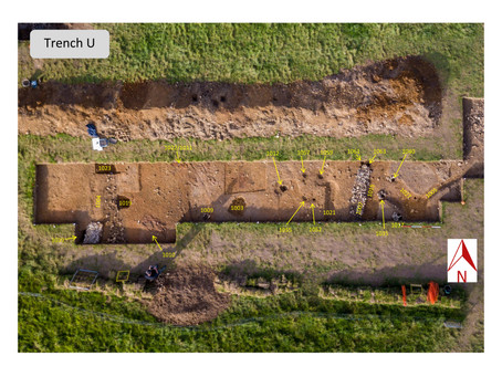The Autumn Colemore dig - how did it go?