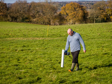 Spring is here - time for the Colemore Spring Dig