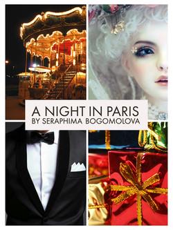 A Night in Paris libretto