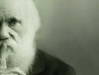 Charles Darwin Admitted that it is Absurd to Believe that the Eye Could have been Formed by Natural