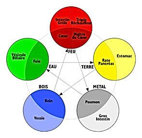 Les cinq éléments de la Médecine Chinoise utilisés en Kinésiologie