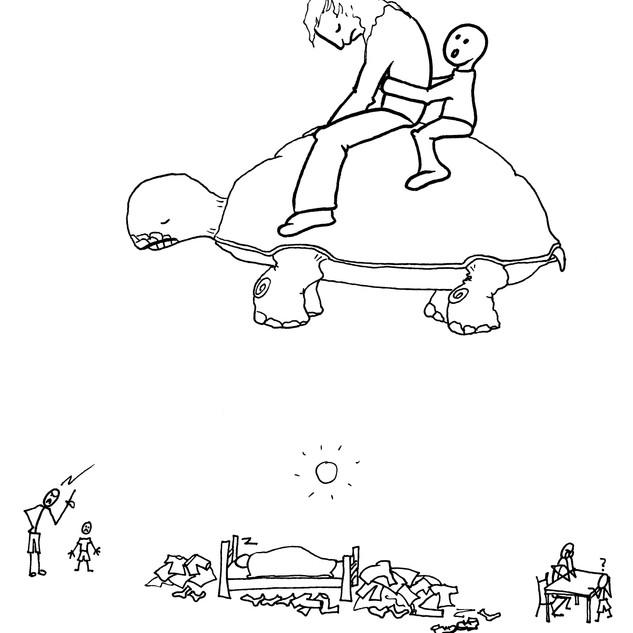16 skildpadde ret.jpg