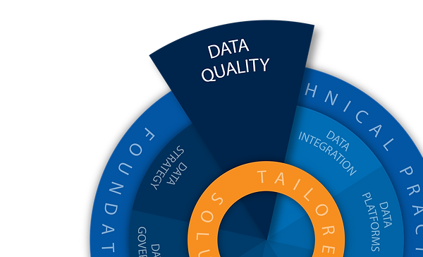 Data Blue Print Info Graphic Data Qualit