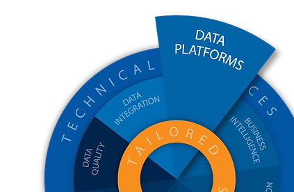 Data Blue Print Info Graphic Data PLATFO