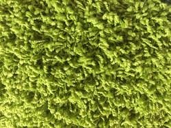 zelený zipík
