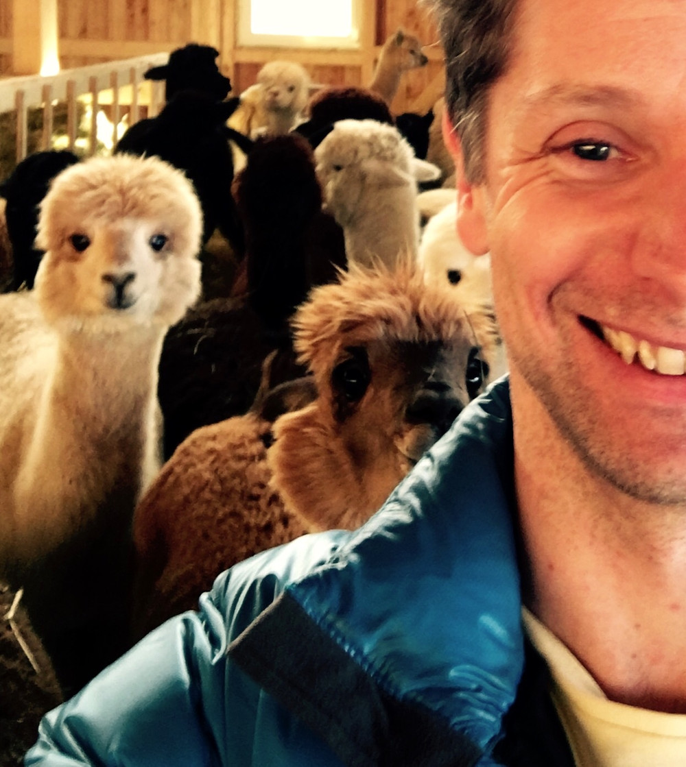 Today I signed the contract for the Alpacas I'm buying from Alpaka Valley in Regau.