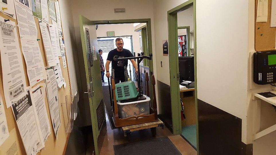 Load in THREE Daniel Squire -- by Fred C