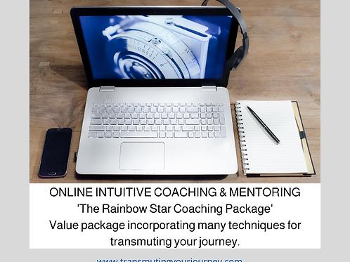 Coaching/Mentoring session