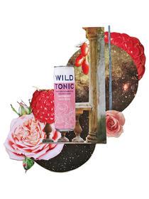 raspberry goji rose  .jpg