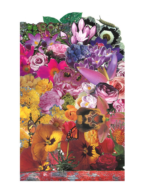 Rainbow Flower Print