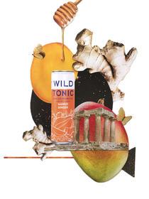 Mango ginger final.jpg