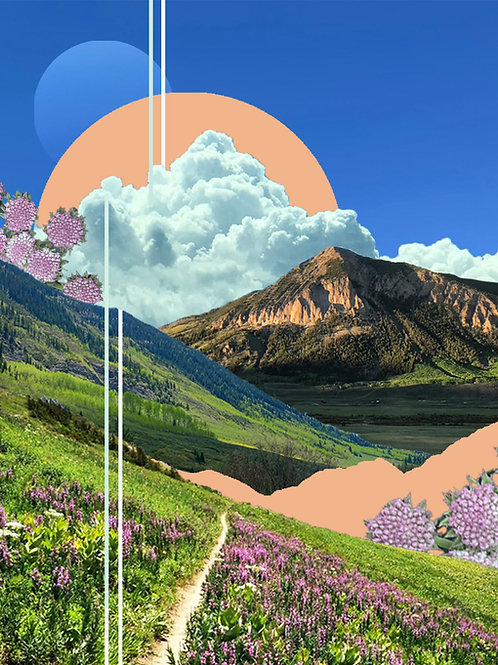 Wildflower Trail Print