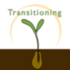 Transitioning - 8-Week Online Learning Event