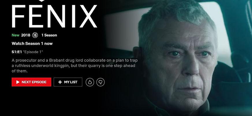 Fenix-Website advert.jpg