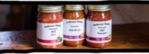 fresh-salsa.jpg