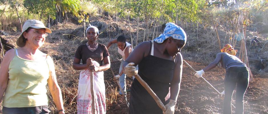 Découvrez le développement de la zone agricole d'Antintorona et du projet Nosy Komba