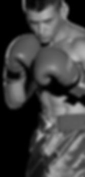 bg-luta-boxe.png